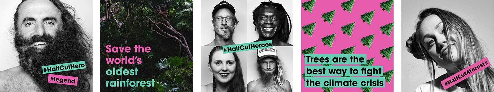 We've Gone HalfCut
